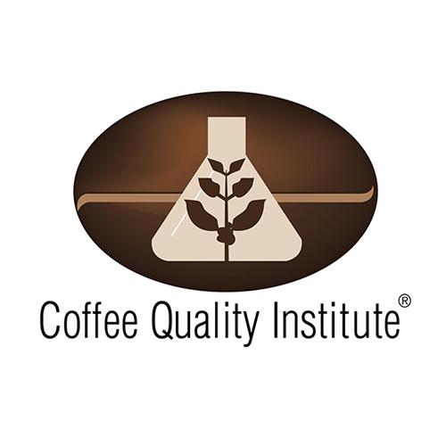 CQI_Logo_FINAL-1